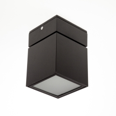 Surface Mount Ceiling Cube